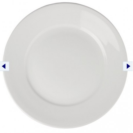 Wide Rimmed Plates 11 in
